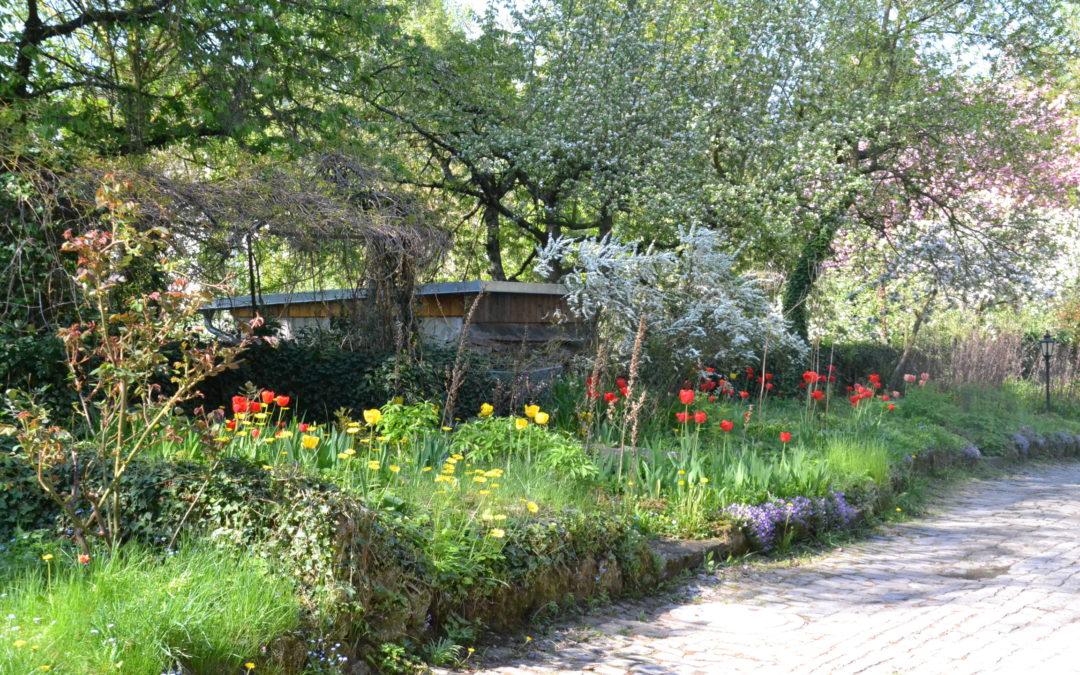 Gartenkultur im Landkreis Haßberge – Konzeption